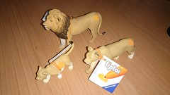 Lions family (ItalianToys) Tags: family animal animals toy toys lion leone animali animale giocattoli giocattolo ranvensburger