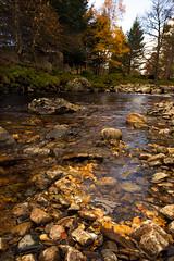 GlenEsk - (Nescot1) Tags: canon river landscape scotland aberdeenshire glenesk canon6d