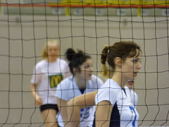 016#VNVB#POITIERS# (alainalele) Tags: france sport french o femme cité north internet creative commons east council housing bienvenue et lorraine 54 nouvelle ville hlm licence banlieue moselle volei presse feminino suru voleibol 排球 bloggeur boree meurthe siatkówka femeie волейбол paternité рода כדורעף 용기 kobiecy 호퍼 alainalele женского 女子的 lamauvida v자형 ボレーをする الكُرَةُ الطَّائِرَة פִילוֹשֵמִי alainnalele