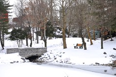 Bridge and Bench at Glen Falls, Williamsville, N.Y. ( Kimberly Collignon - All Rights Reserved) Tags: snowflake bridge november blue trees winter red sun white lake snow ny newyork cold building tree green bird history mill ice water leaves birds rock stone creek swimming river bench four snowflakes grey frozen duck pond buffalo mainstreet rocks stream december glow bright stones january ducks sunny brooke pebbles freeze historical glowing snowing brook willie temperature february icy freezer benches amherst watermill willy colder blustery babbling wintery wintry emptytree williamsville glenfalls oldredmill townofamherst villageofwilliamsvile