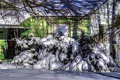 WinterCoversSmall(IMG1852) (OksiesWorld) Tags: winter usa snow ice michigan snowstorm manual icicles hdr burton 18105 tonemapped topazlabs nikond3100