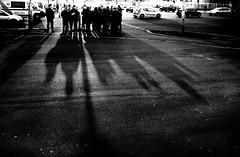 golden hour (Zlatko Vickovic) Tags: blackandwhite monochrome serbia streetphotography novisad vojvodina srbija streetbw streetphotographybw streetstreetphoto streetphotobw zlatkovickovic zlatkovickovicphotography