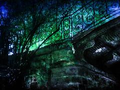 Night Bridge (jeanfenechpictures) Tags: bridge trees light texture night forest walking walk lumire arbres foret
