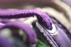 anything goes (nirak68) Tags: deutschland trainers lila lbeck schnrsenkel anythinggoes ger shoelace turnschuhe macromondays 144366 schleswigholsteinkreisfreiehansestadtlbeck 2016ckarinslinsede