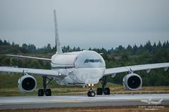 Qatar Cargo - A7-AFZ - A330-200F (Aviation & Maritime) Tags: a7afz qatar qatarairways qatarcargo airbus a330 a330200f airbus330 airbus330200f osl engm osloairportgardermoen oslolufthavngardermoen osloairport gardermoen norway