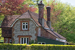 THE COTTAGE (mark_rutley) Tags: trees windows house home nature spring cottage hampshire hedge jigsaw flint meonvalley meonsprings