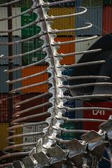 Huang Yong Ping : Empires (dprezat) Tags: paris art architecture nikon gallery nef cargo exhibition exposition napoleon serpent mtal containers d800 empires grandpalais 2016 squelette bicorne monumenta huangyongping nikond800