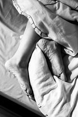 Good Morning 1/52 (Go-tea 郭天) Tags: hello morning shadow bw woman sun white black feet canon foot eos 50mm 1 blackwhite bed bedroom good sleep hidden blanket motivation hi awake toulouse goodmorning bnw duvet 52 confort 100d 52project