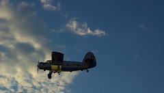 Bugspray plane (Polichrome) Tags: sunset sky up plane close zoom tele