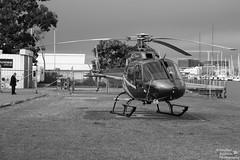 0D6A9546 (Stephen Baldwin Photography) Tags: newcastle australia nsw
