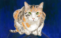 Chatte-isabelle (Isaszas) Tags: digitalart cat chatte tricolore clipart dessin drawing katze couleurs bleue blue zeichnung isasza