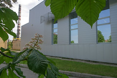 flowered chestnut-1 (algimantas_tirlikas) Tags: autumn chimney building spring may flowersplants