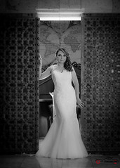 Bride (D'Abascal Photography/ Ramses Abascal) Tags: nikon fong flashdisk lightsphere nikoncls flashdisc fstoppers nikond610 sb600sb800sb600gary