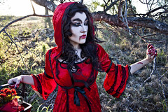Through the Woods 7661 (JoDi War) Tags: trees sunset red wild nature grass fairytale dark lost blood woods wolf dress boots lace gothic victorian velvet hood storybook rhyme grandmothershouse nurseryrhyme throughthewoods storytale