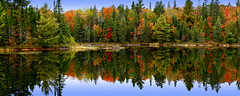 Fall (Nitish_Bhardwaj) Tags: blue autumn red orange ontario canada color colour reflection tree green fall water weather yellow colorful colourful algonquinprovincialpark