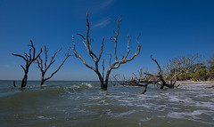 High tide in Botany Bay (agasfer) Tags: sea sky pentax southcarolina botanybay warming desolation global topaz edistoisland k3 detail3 lowcountry 2016 sigma1020