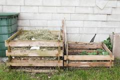 Kompost und Bepflanzung (blumenbiene) Tags: plant garden pflanze zucchini compost garten kompost komposter