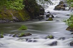 Gulls (1riverat) Tags: longexposure birds river waterfall gulls deschutes le tumwater 1riverat matthewreichel