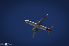 PT-MXO LATAM Airbus A321-231(WL) (Marciobien) Tags: airplane 7d aviao aviao spotter avioes 24105mm canon24105f4 spoter 24105mmf4 canoneos7d canon7d