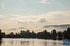 Stein am Rhein (felix.hohlwegler) Tags: water fog canon river landscape schweiz switzerland wasser nebel outdoor rein fluss landschaft rhein canoneos steinamrhein weinberge rhy nebelschwaden eos500d canoneos500d