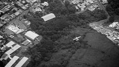 flyby (Bernal Saborio G. (berkuspic)) Tags: white airplane let turboprop flyby airtoair let410 natureair monocromeblack turbbolet