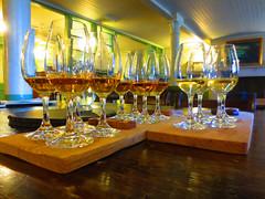 0021 (PalmerJZ) Tags: travel ireland castle scotland whisky scotch falconry
