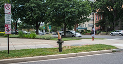 Hydrant Sorting Hat. Day 174 (RPStrick) Tags: street orange colors hydrant fire dc washington cone hill capitol muted