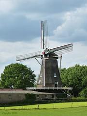 Zwiepse Molen (Cajaflez) Tags: windmill nederland molen wieken flourmill gelderland lochem zwiep korenmolen molenvanzwiep