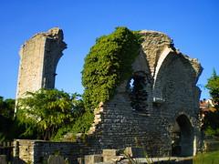 Saint Hans' ruin - Visby (Pl Bmgarr) Tags: old church saint architecture sweden ruin hans gotland visby