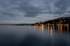 calm (glasnevinz) Tags: newzealand dawn waterfront wellington orientalbay