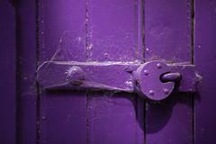 Purple Lock (jimoftheday) Tags: door york england purple unitedkingdom gb padlock canonef135mmf2lusm
