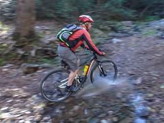 Russel (Neil Ennis) Tags: cycling mtb creekroad creekcrossing cabbagetreecreek daguilarnationalpark