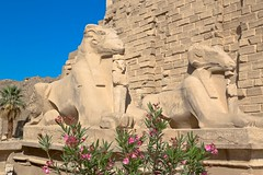 Karnak Temple (Schamane27) Tags: africa travel building history tourism archaeology monument sphinx museum architecture ancient memorial ruins pyramid antique african empty religion egypt palm historic egyptian obelisk archeology complex hieroglyphics antiquities