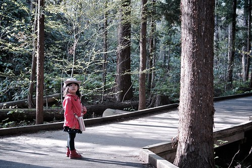 SAKURAKO - Forest bathing.