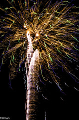 Fireworks Shower (Alex Tillman) Tags: sparkles night shower fireworks explosion relayforlife