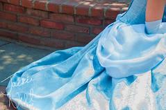 Cinderella's Dress (jackoraptor) Tags: disneyland disney cinderella disneyprincess facecharacter princesscinderella