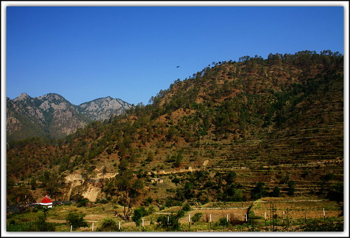 View from the Veranda @ Saur Village