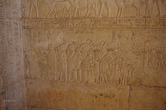 Tomb of Petosiris 22 (eLaReF) Tags: egypt tombs isadora hieroglyphs hieroglyphics ibex elgebel tunaelgebel petosiris tunaelgebbel