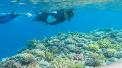IMG_1512.jpg (b34chd00d) Tags: underwater redsea egypt sharmelsheikh scuba diving