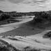 "Areia e vegetação. • <a style=""font-size:0.8em;"" href=""http://www.flickr.com/photos/39546249@N07/9539706631/"" target=""_blank"">View on Flickr</a>"