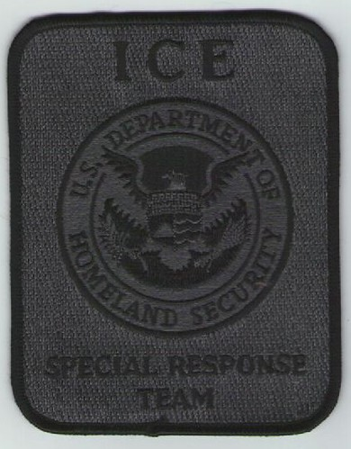 Immigration and Customs Enforcement SRT (Grey)