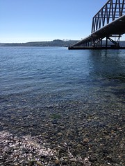 Bridge over Calm Water (creativity_unmastered) Tags: new trip travel sky people house tree green nature water beauty grass clouds season landscape fun washington cool artwork open waterfront earth air young lifestyle artsy simplicity manmade casual simple majestic sureal postgrad hopeful