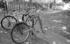 Parked and Locked in the 1300 block of Wellington (Fogel's Focus) Tags: chicago coffee bike bicycles diafine acros ricohgr1v 4545 film:iso=100 legacypro100 acufinediafine developer:brand=acufine developer:name=acufinediafine film:brand=freestylearista freestylearistalegacypro film:name=freestylearistalegacypro100 parkedandlocked filmdev:recipe=8912