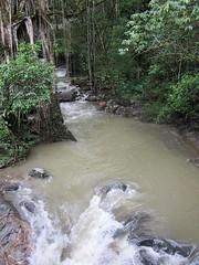 Minca, Colombia (Dec-2010) 13-006 (MistyTree Adventures) Tags: southamerica stream colombia jungle minca