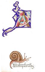 Caplletre A (i), Keith Adams (Catannea) Tags: illumination snail calligraphy caligrafia calligraphie keithadams illuminaci calligrafia lettrinea capelladespaper