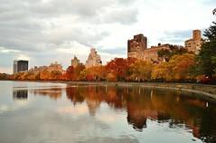 Central Park-The Reservoir, 11.02.13 (gigi_nyc) Tags: nyc newyorkcity autumn sunset leaves centralpark autumnleaves autumncolors fallfoliage thereservoir leafpeeping thisisnewyorkcity