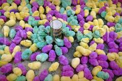 Mercado (josebassit) Tags: little market chick mercado colourful pintinhos