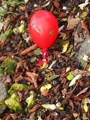 Gevallen (Merodema) Tags: red ballon herfst balloon fallen rood stranded gevallen gestrand