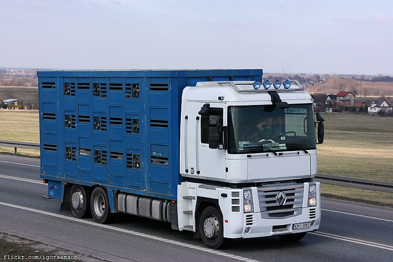 Modernistyczne The World's Best Photos of livestock and renault - Flickr Hive Mind IA64