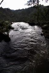 IMG_7560-top Preston Waterfall-A (geoffgleave) Tags: waterfall tasmania preston
